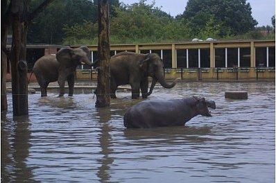 povodne2002